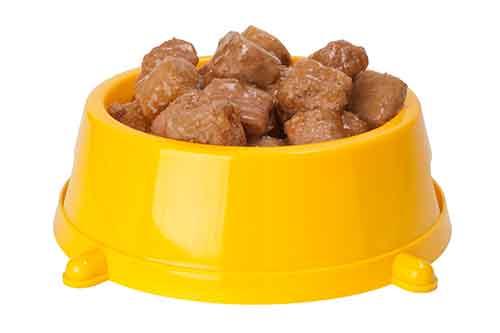 pug food
