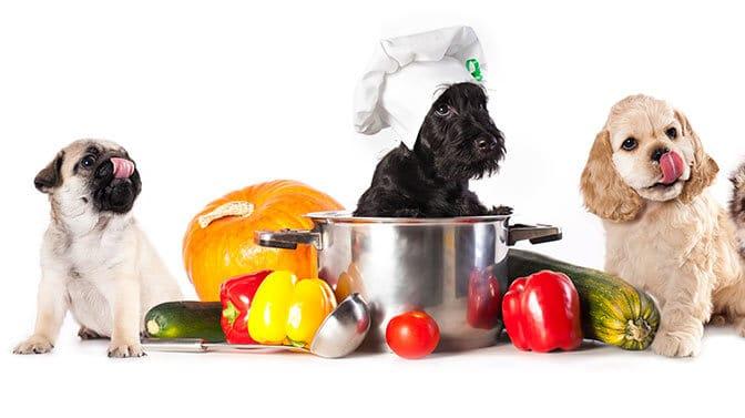 cute food pug names