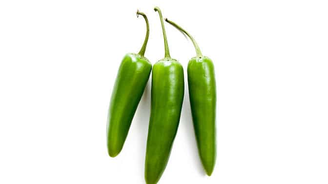 are jalapenos safe for Pugs