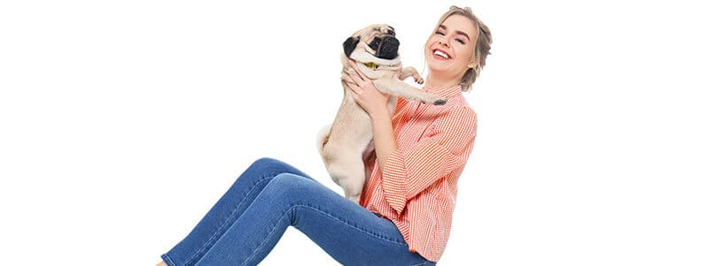 are pugs affectionate