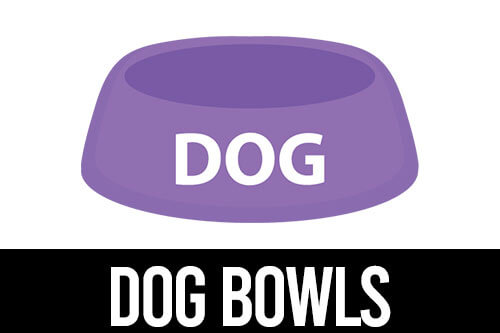best bowls for pugs icon