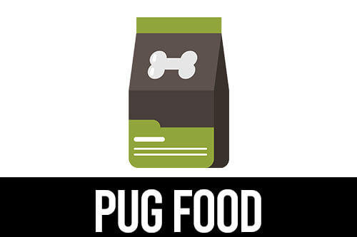 best dog food for Pugs