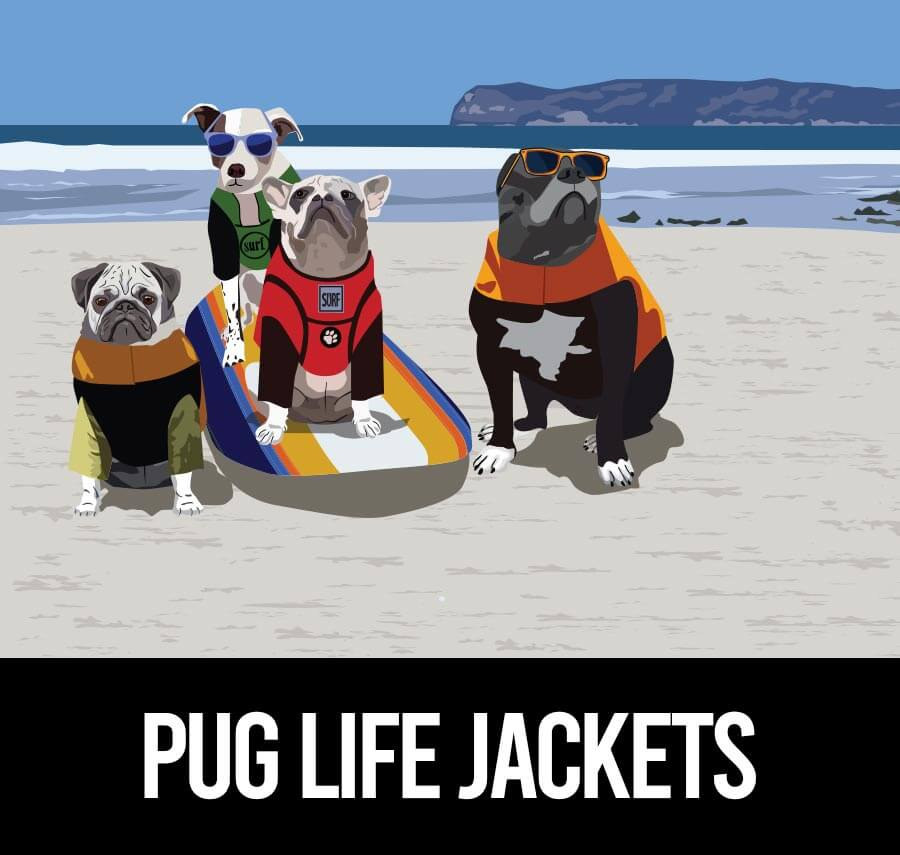 best life jacket for Pugs