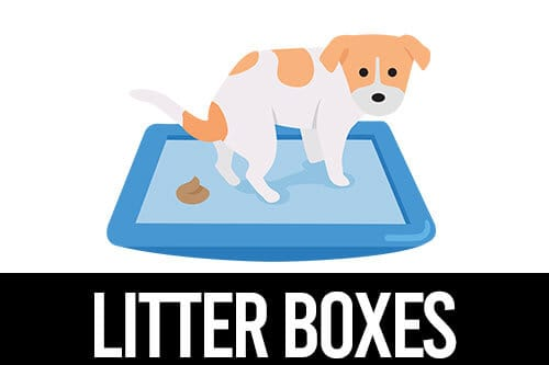 best litter boxes for Pugs 500x333