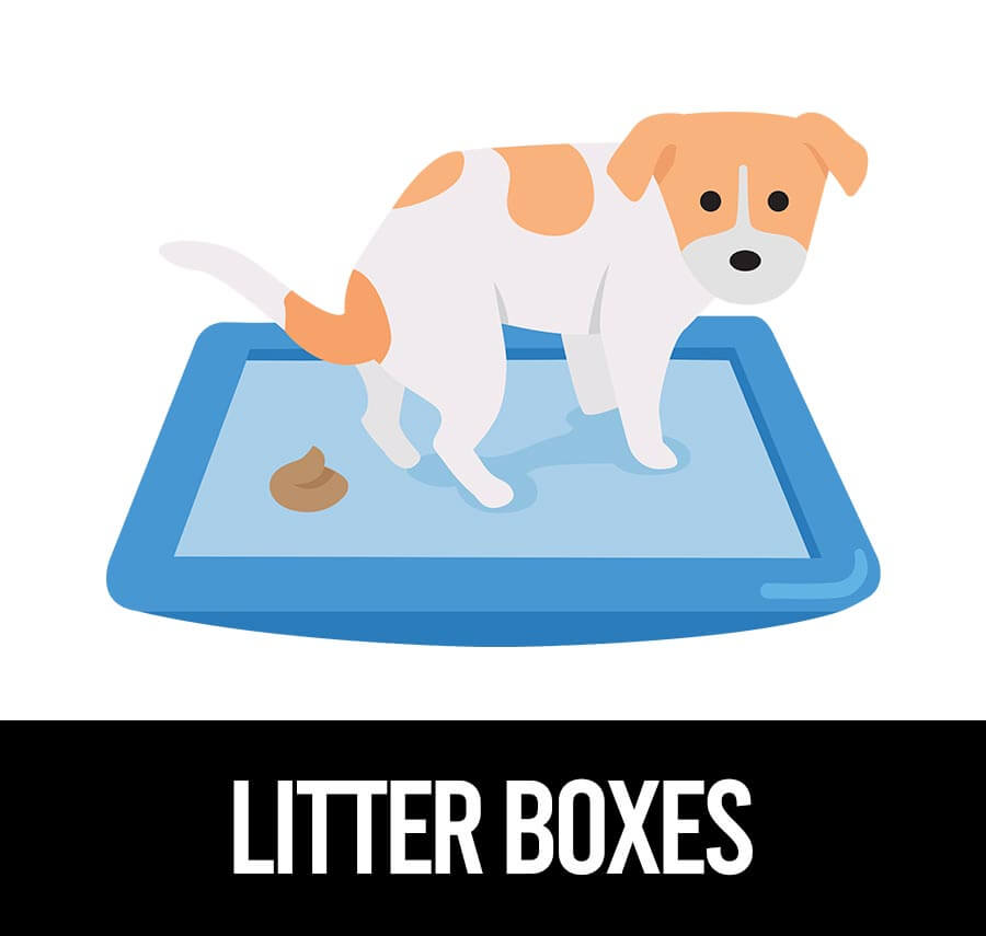 best litter box for pugs