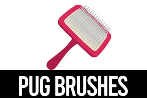 best pug brushes icon