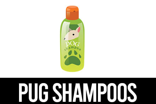 best shampoo for pugs icon