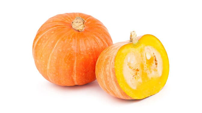 how much pumpkin can a pug eat
