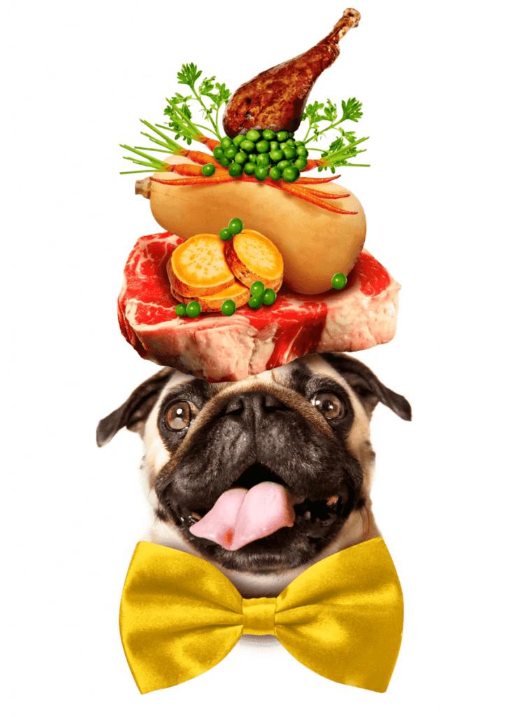 Dog Food Made With Real Food