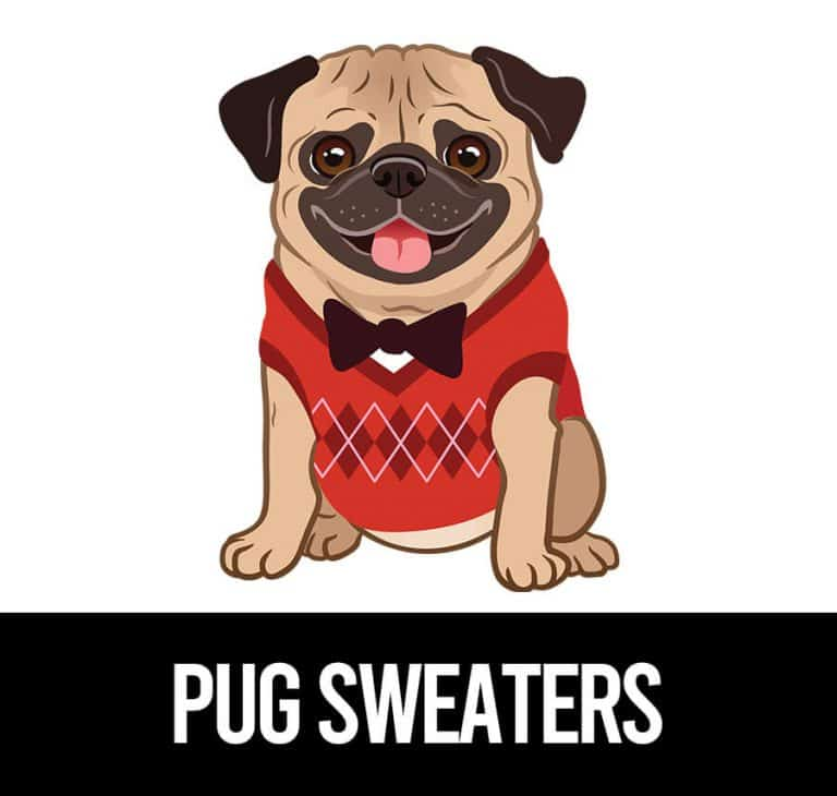 best sweaters for pugs