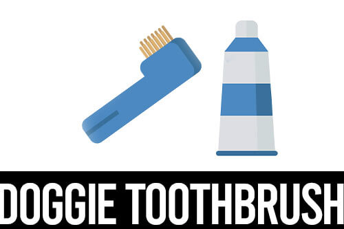 best toothbrush for pugs icon