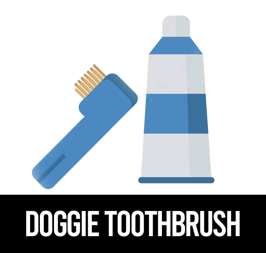 best toothbrush for pugs