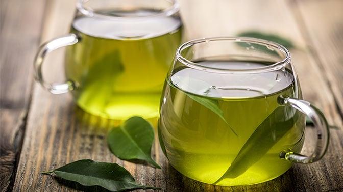 can pugs drink green tea