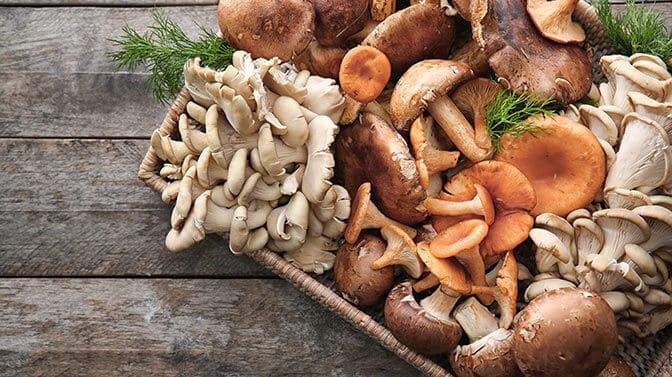 store bought mushrooms