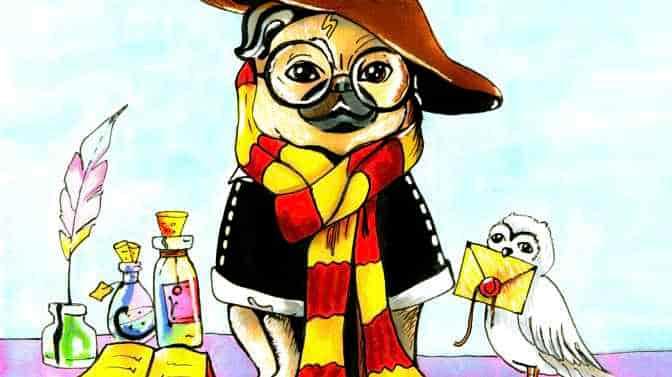 Harry Potter Pug Names